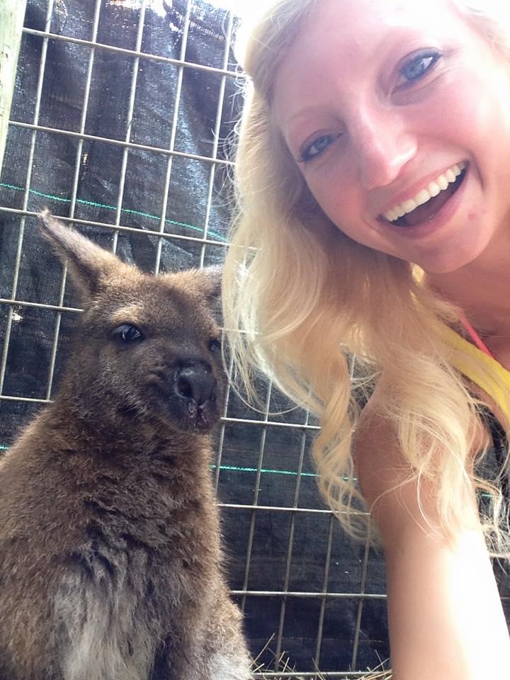 wallaby selfie